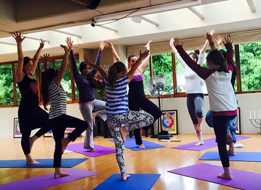 Yoga and Mindfulness Camp
